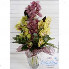 Buchet orhidee B79