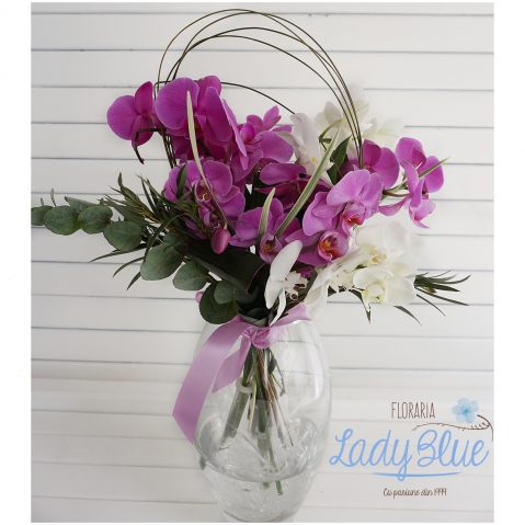 Buchet Phalaenopsis B85