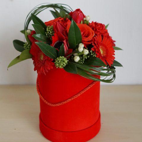 Cutie roșie AF168