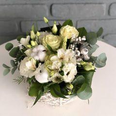 Flori albe de Craciun
