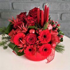 Flori rosii de Craciun